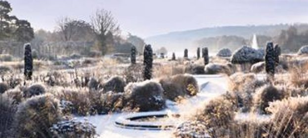 Best Gardens to visit over the Christmas Holidays