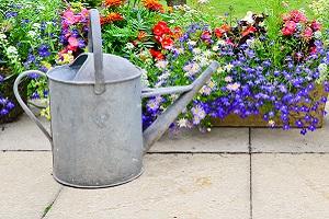 garden maintenance in woking surrey