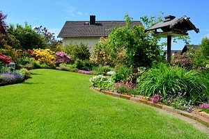 gardening services woking surrey resized